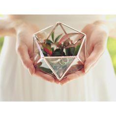 NEW! Mini Geometric Terrarium Icosahedron Ring Pillow Alternative... ($40) via Polyvore featuring home, home decor, glass terrarium, geometric terrarium, miniature terrarium, glass home decor and geometric glass terrarium