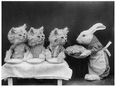 The 3 Little Kittens.