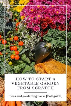 A guide showing you how to make a vegetable garden as a beginner. Whether it's an indoor garden in the window of your apartment, a small raised bed in your garden or a full on permaculture design - this guide will show you how. Learn how to pick the right type of garden for your needs, how to plan your vegetable garden layout, how to pick which vegetables to sow and when to start planting.