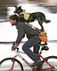 Günaydınnnn #bisiklet #bisikletsevenler #bisikletözgürlüktür #bisikletturu #bisikletliulasim #bike #bicycle #cycling #hayvanseverler #günaydın #iş #gunaydin #yağmur #hayvansevgisi