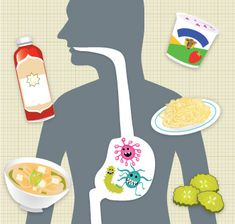 Article: The surprising health benefits of fermented and cultured foods by Cynthia Lair I PCC Natural Markets