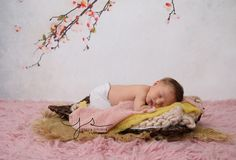 Jessica Stringer Photography | Newborn, milestone, cake smash sessions | Rochester NY|   Blossoms, pink flokati, layers, bump blanket, stretch wraps, upcycled pants newborn baby girl