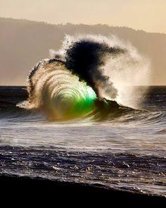 Wavees