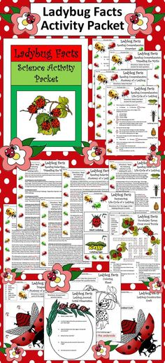 Ladybug Facts Activity Packet: This colorful activity packet explores one of the most beloved insects on Earth, the Ladybug or Ladybird Beetle. Contents include: * 4 Reading Selections & Quizzes - Overview of the Ladybug, Dispelling the Ladybug Myths, The Anatomy of the Ladybug, The Ladybug Life Cycle * Ladybug Anatomy Diagram Worksheet * Ladybug Life Cycle Sequencing Worksheet * Crossword Puzzle * Seven Page Ladybug Journal * Ladybug Coloring Sheet * Ladybug Construction Craft * Answer keys
