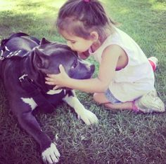 Big breed dogs used tobe referred to as nanny dogs. Dogs And Kids, Dogs And Puppies, Doggies, N Animals, Cute Animals, Pitbulls, Nanny Dog, American Pitbull, Bully Dog