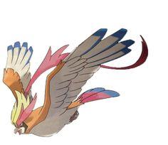 mega pidgeot - Google Search Pokemon Pidgeot, Pokemon Pokedex, Pokémon Mewtwo, Mega Pokemon, Cool Pokemon, Pokemon Team, Pokemon Pins, Art Pikachu, Children