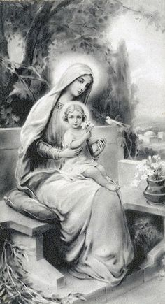 | Awestruck Catholic Social Network