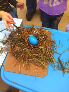 Preschoolers building a nest while learning about birds
