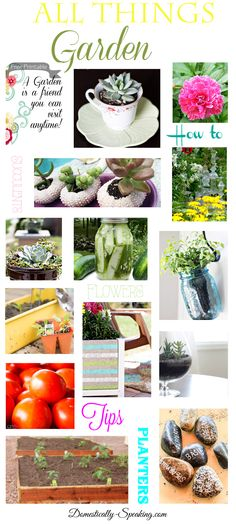 All Things Garden over 75 Garden Projects, Recipes and Tips