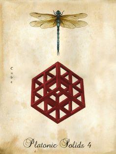 Lindsey Carr | Platonic Solids 4 / Sacred Geometry <3