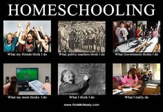 Homeschooling.  I would say for me, both the bottom right AND top right pictures are accurate lol.  And I do love roller coasters... hehe.  X)