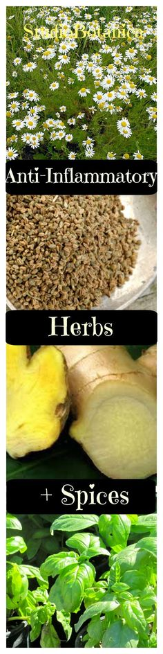 With every teaspoon of these anti-inflammatory herbs and spices, you can enhance tastes and help your body to keep inflammation at bay. Check out this list!