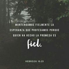 Mantengamos firme, sin fluctuar, la profesión de nuestra esperanza, porque fiel es el que prometió.