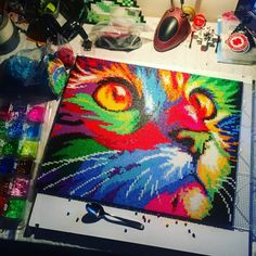 Colorful cat nabbi/hama perler bead art by dropthebead