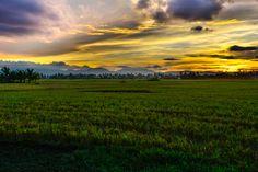 Sunset at the rice fields, just a peek from a restau's backyard Travel Photos, Fields, Rice, Backyard, Celestial, Sunset, Outdoor, Outdoors, Patio