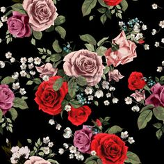 Seamless Floral Pattern With Red And Pink Roses On Black Background, Watercolor Stock Vector - Illustration of botanical, background: 50463092 Cute Owls Wallpaper, Simple Iphone Wallpaper, Rose Wallpaper, Flowers Black Background, Black Background Wallpaper, Background Vintage, Vintage Backgrounds, Red And Pink Roses, Cool Wallpapers For Phones