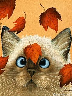 Erin Martin by Lowell Herrero Cats Kitty Fall Autumn Prin. I Love Cats, Crazy Cats, Cute Cats, Siamese Cats, Cats And Kittens, Tonkinese Kittens, Erin Martin, Image Chat, Gatos Cats