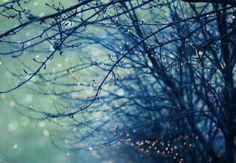 #FRACT_ALL _____Διήγημα: «Η νύχτα που κοιμήθηκε με το λύγκα»  Του Νίκου Τακόλα http://fractalart.gr/nikos-takolas2/
