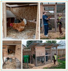 Chicken Coop Plans ::: Coop Thoughts Blog