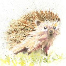 Limited Print of ORIGINAL watercolour painting of HEDGEHOG 223 by Helen Rose