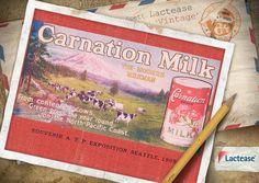 """""""Carnation Condensed Milk, the milk from contented cows"""" è il simpatico e vincente messaggio pubblicitario riproposto oggi da #LacteaseVintage e usato da Carnation, azienda americana che produceva #latte condensato e altri prodotti correlati a questo #alimento."""