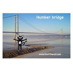 Knot the Humber bridge conquered #humber #yorkshire #lincolnshire #bridge #phobia #photo #fun #photofun