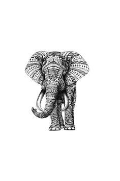 Elephant illustration black and white