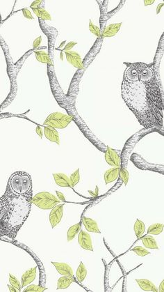 Brewster Home Fashions Essentials x Enchanted Forest Owl and Tree Wallpaper Roll Owl Wallpaper, Forest Wallpaper, Botanical Wallpaper, Wallpaper Samples, Modern Wallpaper, Animal Wallpaper, Wallpaper Roll, Peel And Stick Wallpaper, Designer Wallpaper