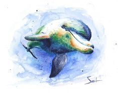 Items similar to Watercolor Painting Dolphin Art, Dolphin Painting . Watercolor Pencil Art, Watercolor Sea, Watercolor Animals, Watercolor Paintings, Dolphin Painting, Dolphin Art, Sea Life Art, Delphine, Abstract Animals