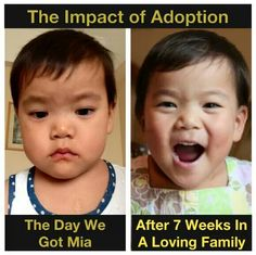 The Impact Of Adoption! This is a true story! I have pictures to prove it!