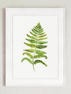 Green Leaves Fern Set of 2 Botanical Art Print by ColorWatercolor