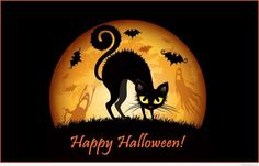 Watch and enjoy our latest collection of halloween cat hd images for your desktop, smartphone or tablet. These halloween cat hd images absolutely free. Retro Halloween, Halloween Fun Facts, Fröhliches Halloween, Feliz Halloween, Halloween Pictures, Holidays Halloween, Halloween Decorations, Halloween Timeline, Halloween Graveyard