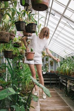 """Is it just me, or are indoor plants havinga moment right now? It's hard to imagine that something as classic and mundane as a plant could ever be """"out of style"""", but these days nearly every home I..."""