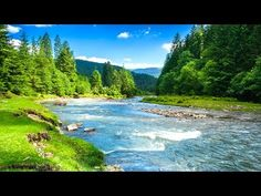9 HOURS Nature Sounds. River in the Shire. Relax, No Music, Sleep, Study, Water Sounds, Meditation - YouTube