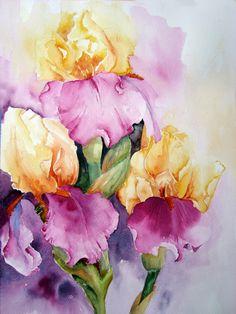 Watercolour Florals: Iris: Jazz Festival 2