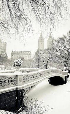 Bow Bridge in the snow - Central Park, New York City