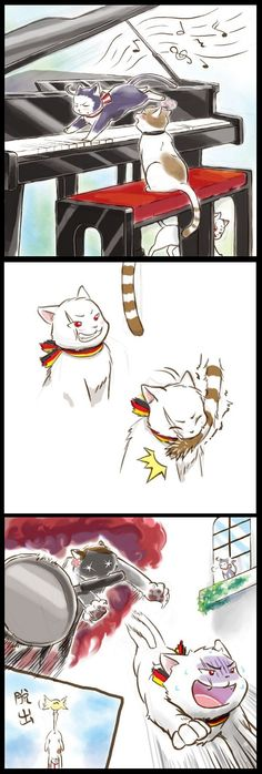 "Frying Pangle, neko-style :D  Austria: *playing some amazing song with the four paws he has like crazy*  Hungary: *listening intently, happily*  Prussia: Oh look, a tail; I think I'll pull it!  Bad idea, Gilbert ^^"" even Hungary-cat has a frying pan!"
