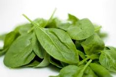 http://www.bubblews.com/news/1139838-the-spinach