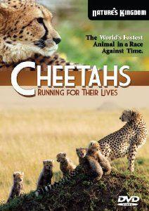 Amazon.com: Cheetahs Running for their Lives: N/A: Movies & TV
