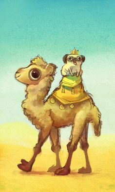 Pug riding a Camel by Heather Gross (© 2013)
