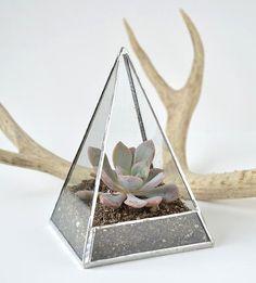 Objeto de deseo: terrario geométrico