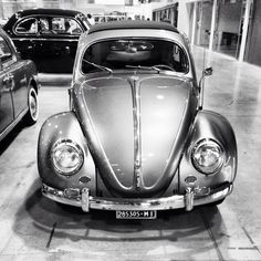 - Wolkswagen Beetle Smile -