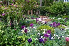 chelsea flower show 2019 Chelsea Flower Show, Garden Show, Dream Garden, My Secret Garden, Secret Gardens, Chelsea Garden, Garden Projects, Garden Ideas, Front Yard Landscaping