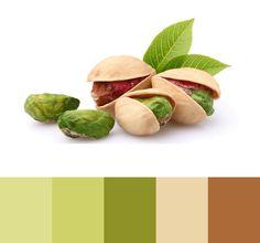 Pistachio color palette