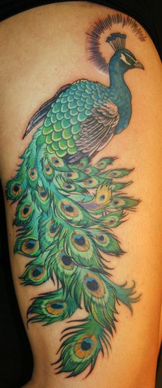 peacock by Phedre1985.deviantart.com on @deviantART