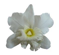 Silk Orchid Flower Hair Clip Bridal Wedding (White) Bonit... https://www.amazon.com/dp/B00D4FCNXK/ref=cm_sw_r_pi_dp_wGiFxbQNHQDYD