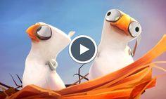 Sales Gosses : un court-métrage d'animation français met en scène avec humour un rapace exaspéré par ses oisillons Film Gif, Film D'animation, Video Film, Video Humour, Movie Talk, Movie Gifs, French Films, Cartoon Kids, Animation Film