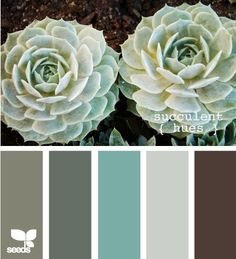 Soft teal, brown, and grey color scheme. green brown grey  aqua  sea foam...absolutely love the colors here, mixed with a little ivory/white!