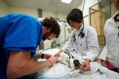 . Radiology Schools