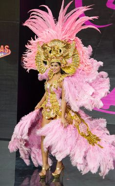 miss universe 2013 favorites | Miss Costa Rica from 2013 Miss Universe Costume Contest | E! Online